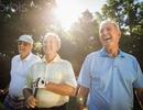 6 nguyên tắc vàng cho sức khỏe người cao tuổi
