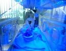 Cháu bé sinh non suýt bị chôn sống đã tử vong