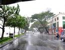 Vùng tâm bão số 11 sẽ đổ bộ vào Đà Nẵng