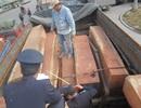 Đã tháo gỡ được tình trạng ùn tắc xe chở gỗ tại cửa khẩu Lao Bảo