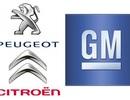 GM có thể sẽ mua lại Peugeot và Citroen