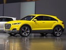 Bất ngờ Audi TT offroad