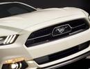 Ford Mustang phiên bản đặc biệt kỷ niệm 50 năm