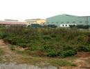 Hà Nội mạnh tay xử lý nhiều dự án bỏ hoang