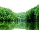 Cần Giờ lọt Top 100 địa điểm du lịch bền vững