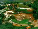 Việt Nam, Hội An trong danh sách các nước và thành phố đáng tham quan nhất 2015