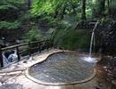 """Suối nước nóng Nhật Bản bị đóng cửa vì """"quan hệ tập thể"""""""