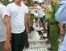 """Xe biển Lào """"chế"""" hang hốc để giấu gỗ quý, chống đối kiểm lâm"""