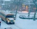 Mỹ: Bão tuyết lịch sử vùi lấp nhiều bang, phong tỏa New York