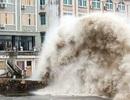 """Thượng Hải """"run rẩy"""" trước siêu bão mạnh nhất từ năm 1949"""