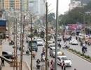 Thanh tra Hà Nội: Cây trồng trên đường Nguyễn Chí Thanh là cây Mỡ