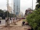 Chủ tịch Hà Nội: Cây trồng lại trên đường Nguyễn Chí Thanh phải xanh tốt
