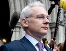 Cuộc đời nhà sáng lập WikiLeaks lên phim