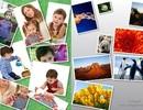 Tạo ảnh ghép tuyệt đẹp và đầy nghệ thuật với phần mềm chuyên nghiệp