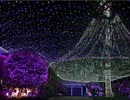 """Biến nhà thành """"thiên đường ánh sáng"""" với hơn 500.000 bóng đèn"""