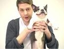 Chó phản ứng hài hước khi xem ảo thuật