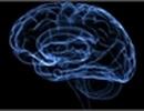11 lý do khiến người thông minh thất bại trong cuộc sống