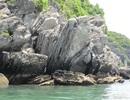 """""""Tiến cử"""" quần đảo Cát Bà - Long Châu là di sản thiên nhiên thế giới"""