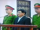 Cựu Chủ tịch Tiên Lãng được hưởng án treo