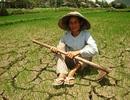 Khô hạn nghiêm trọng kéo dài tại miền Trung và Tây Nguyên