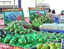 Rộn rã chợ Tết trong siêu thị Metro