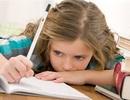 Cấm bài tập về nhà để học sinh có thời gian cho gia đình