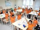 Vì sao phụ huynh chọn trường song ngữ Wellspring Sài Gòn?