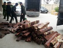 Hà Nội: Phát hiện vụ vận chuyển gỗ quý bằng đường hàng không