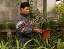 Chàng trai tật nguyền kiếm trăm triệu từ hoa lan