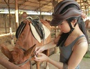 Bạn trẻ Sài thành rủ nhau học cưỡi ngựa