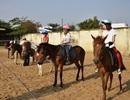 Ghé thăm trường dạy cưỡi ngựa duy nhất ở Sài Gòn