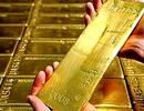 Giá vàng tuần tới nhiều khả năng tăng trở lại