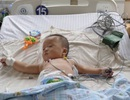 Trung Quốc: 2 bé gái tử vong vì ăn sữa chua nhiễm thuốc chuột