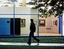 Trộm đòi kiện bảo tàng sau khi đánh cắp tranh vì canh gác lỏng lẻo