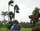 Nửa triệu dân Ấn Độ di tản tránh siêu bão