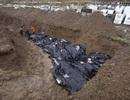 Xót xa cảnh nạn nhân bão Haiyan được chôn cất tập thể