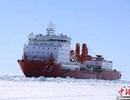 Tàu phá băng Trung Quốc bị kẹt giữa băng khi đi giải cứu tàu Nga