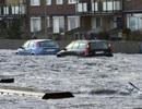 Bão mạnh đổ bộ châu Âu làm ít nhất 10 người chết