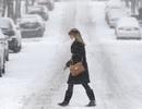 """90 triệu dân Mỹ """"nín thở"""" trước bão tuyết"""