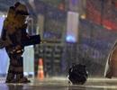 Phát hiện 2 ba lô khả nghi tại nơi xảy ra vụ đánh bom Boston