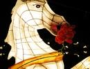 Lễ hội đèn lồng thắp sáng Tết Hội An