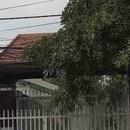 Hà Nội: Bà chủ nhà nghỉ bị sát hại, chặt xác, thả sông phi tang