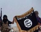 Dự đoán số phận của nhóm Nhà nước Hồi giáo tự xưng trong năm 2016