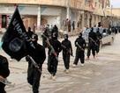 IS xử tử 80 người vì làm gián điệp cho Iraq
