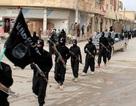 Liên quân tiêu diệt 22.000 phiến quân IS tại Syria-Iraq