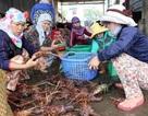 Cấp hơn 130.000 thẻ BHYT miễn phí cho người dân miền biển