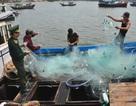 Ngư dân tố bị lực lượng có vũ trang nước ngoài cướp tài sản