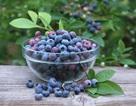 Top 5 loại trái cây giúp chị em duy trì vẻ thanh xuân