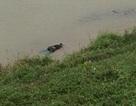 Phát hiện xác người đàn ông nổi trên sông