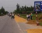 Biến quốc lộ 1A thành sân phơi nông sản